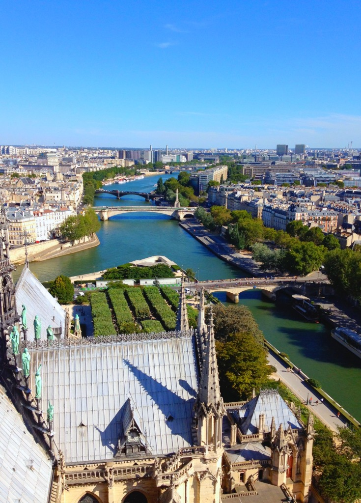 Paris view from ND tower.jpg