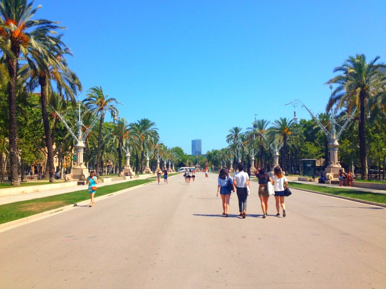 Barcelona palm trees four friends