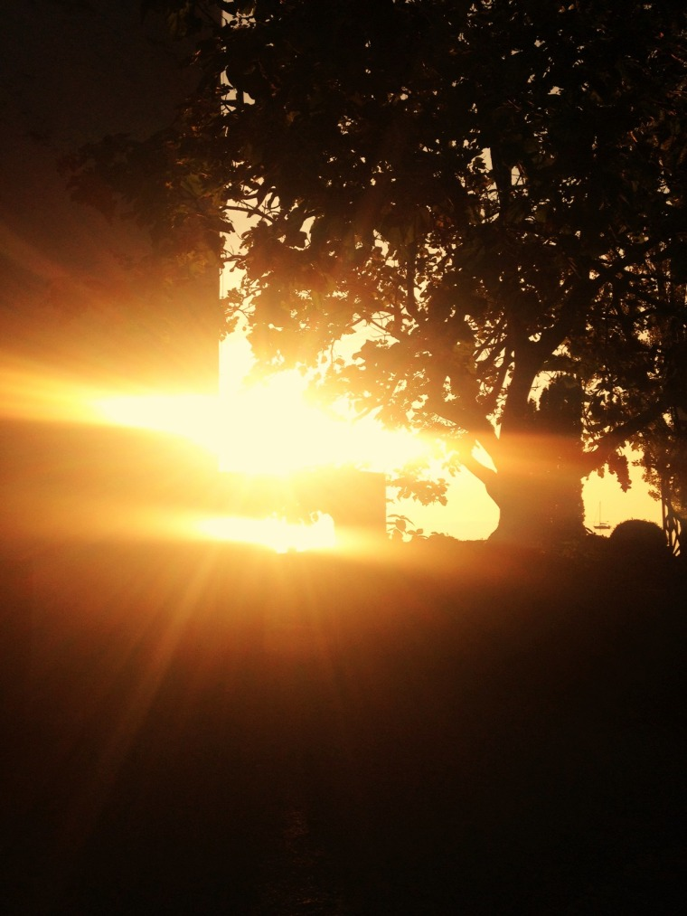Vevey sun