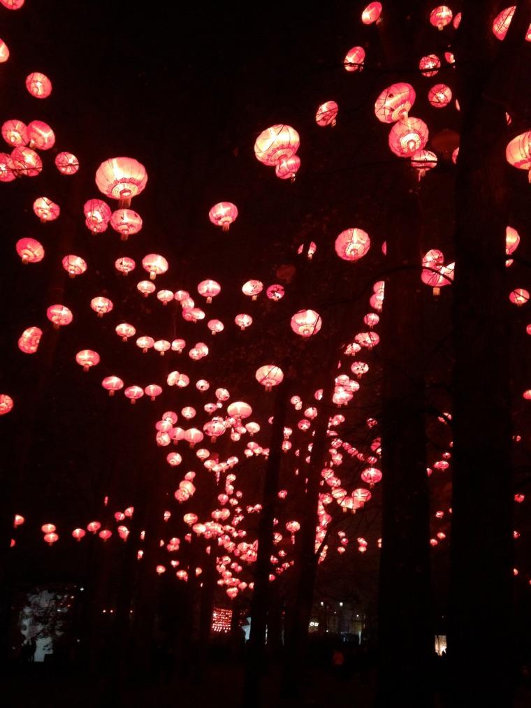 Fete des lumieres jellyfish lanterns