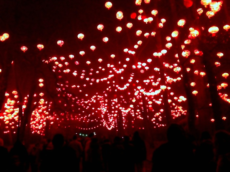 Fete des lumieres red lanterns