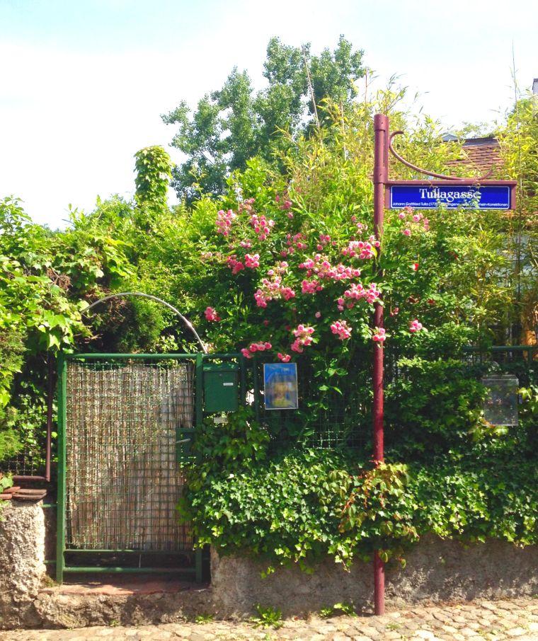 Breisach La Vie En C Rose2
